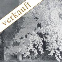Franz hecker Apfelbaum